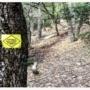 Δρομείς υγείας: Ενημέρωση και σωστός προγραμματισμός στο Serres Ultra Trail (photos)